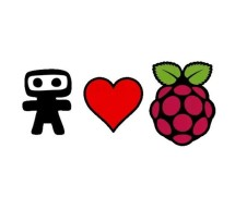 Raspberry Pi Thief Detector