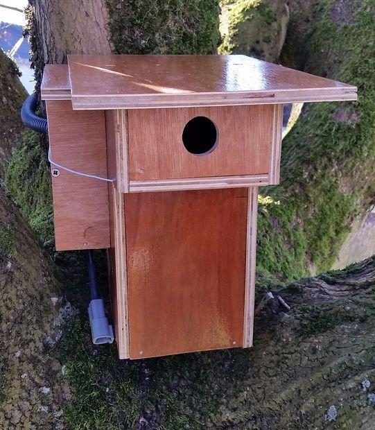 Raspberry with cam in birdhouse schematich