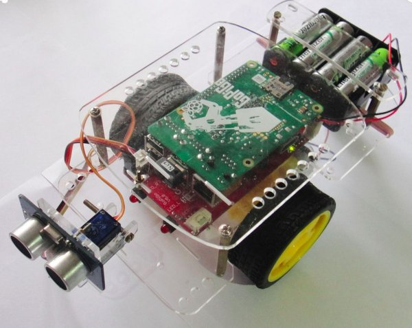 Give Your Raspberry Pi Robot a Worm Brain