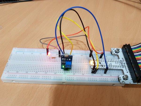Digital Light Sensor (1)