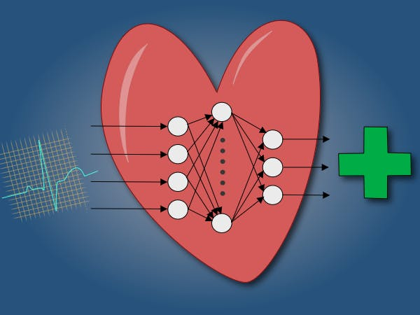 Low-Cost ECG Pathology Detection with Deep Neural Networks